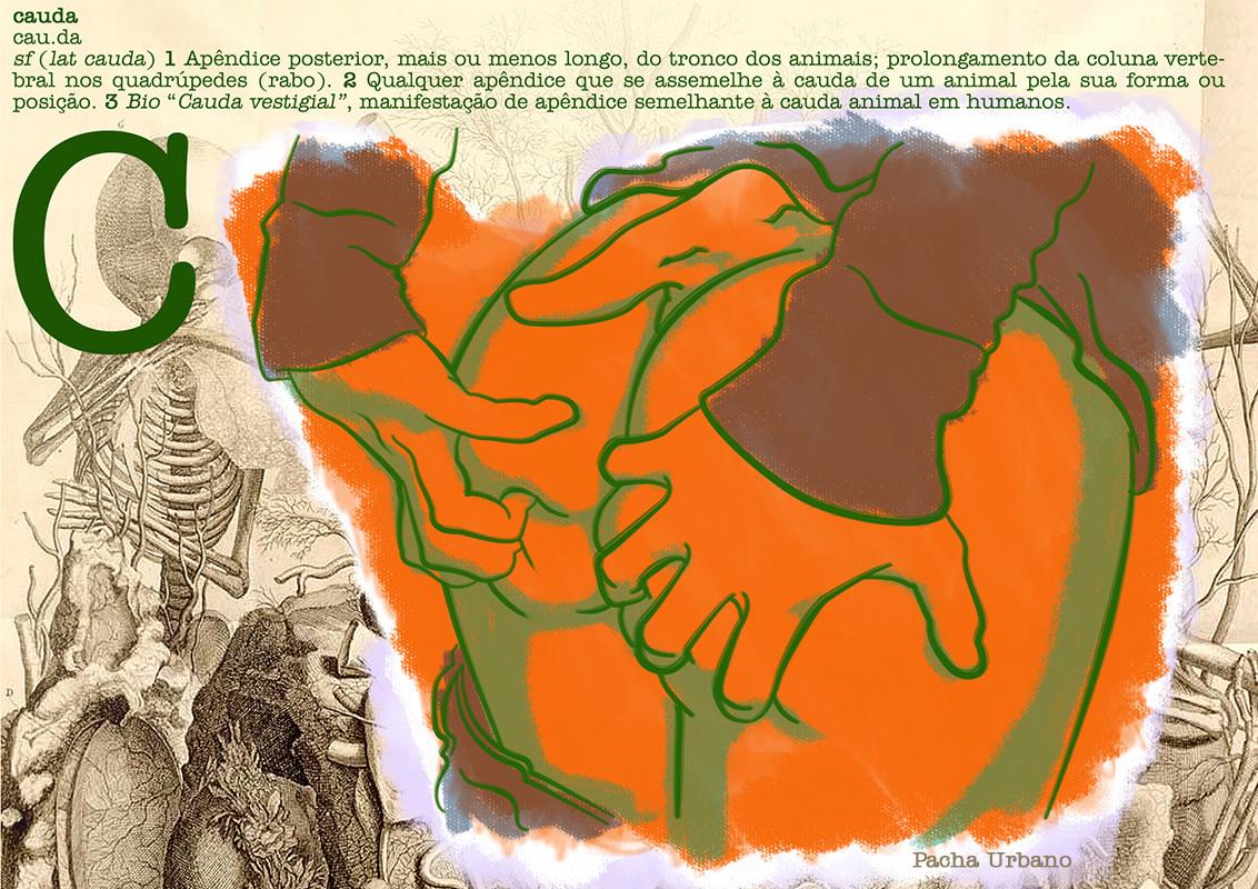 Cauda - postal colecionável da série Dicionário Erótico de Teratologia.